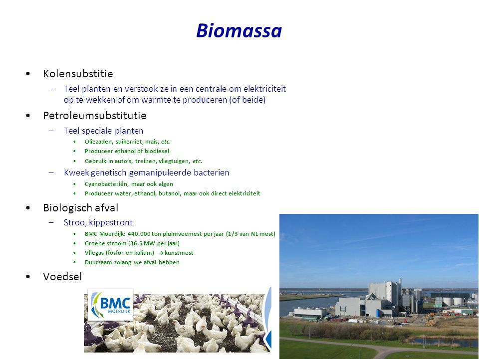 Biomassa Kolensubstitie Petroleumsubstitutie Biologisch afval Voedsel