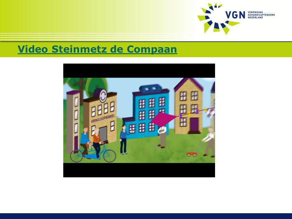 Video Steinmetz de Compaan