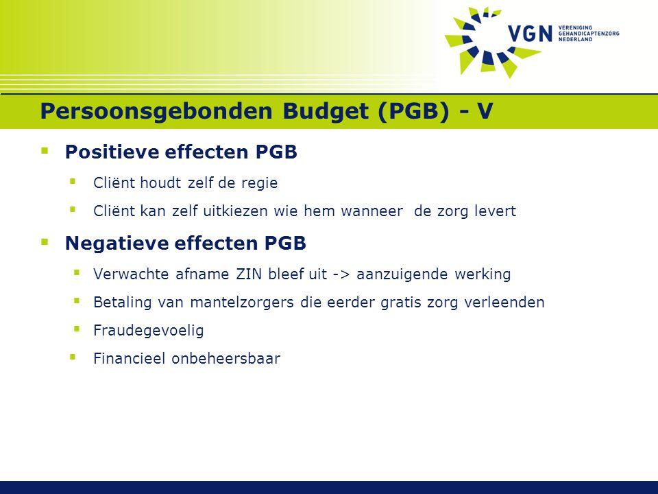 Persoonsgebonden Budget (PGB) - V