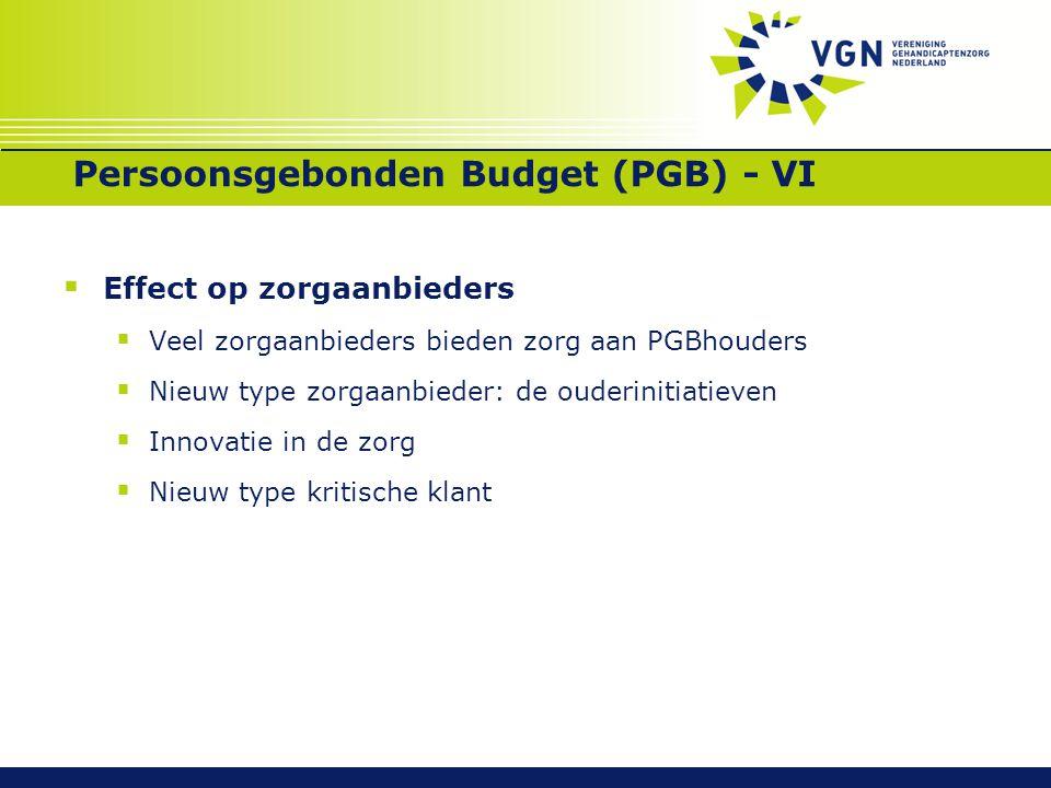 Persoonsgebonden Budget (PGB) - VI