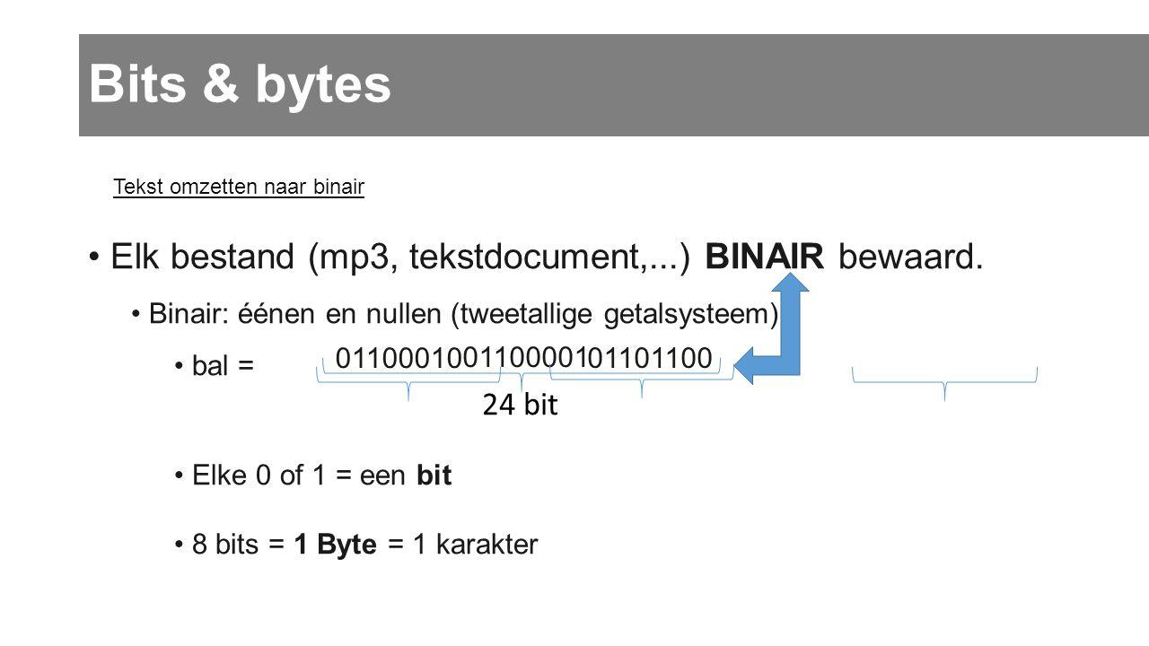 Bits & bytes Elk bestand (mp3, tekstdocument,...) BINAIR bewaard. b a