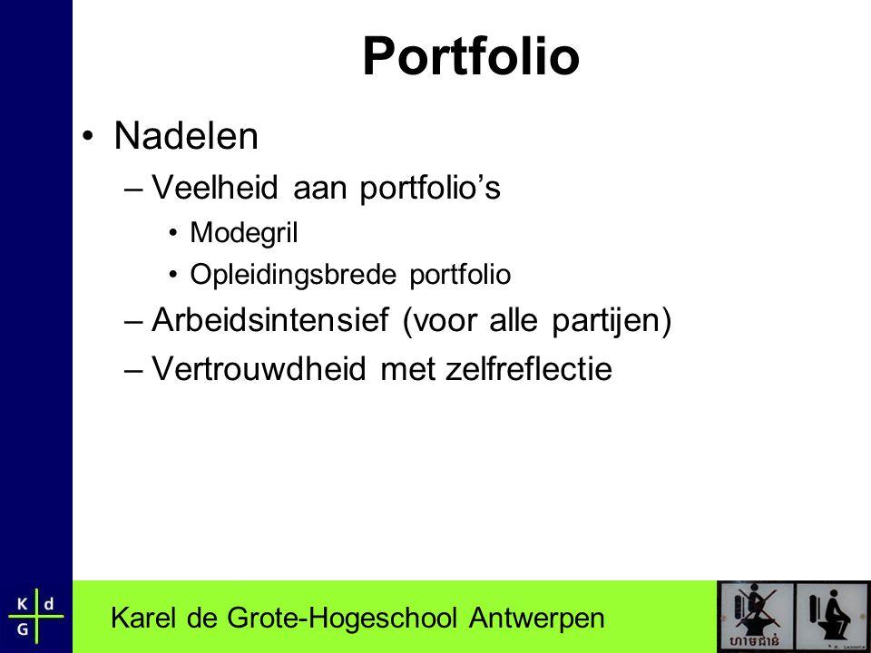 Portfolio Nadelen Veelheid aan portfolio's