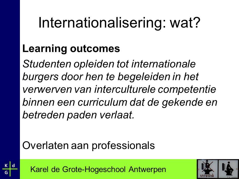 Internationalisering: wat