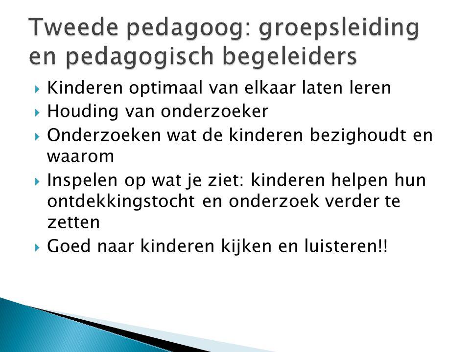 Tweede pedagoog: groepsleiding en pedagogisch begeleiders