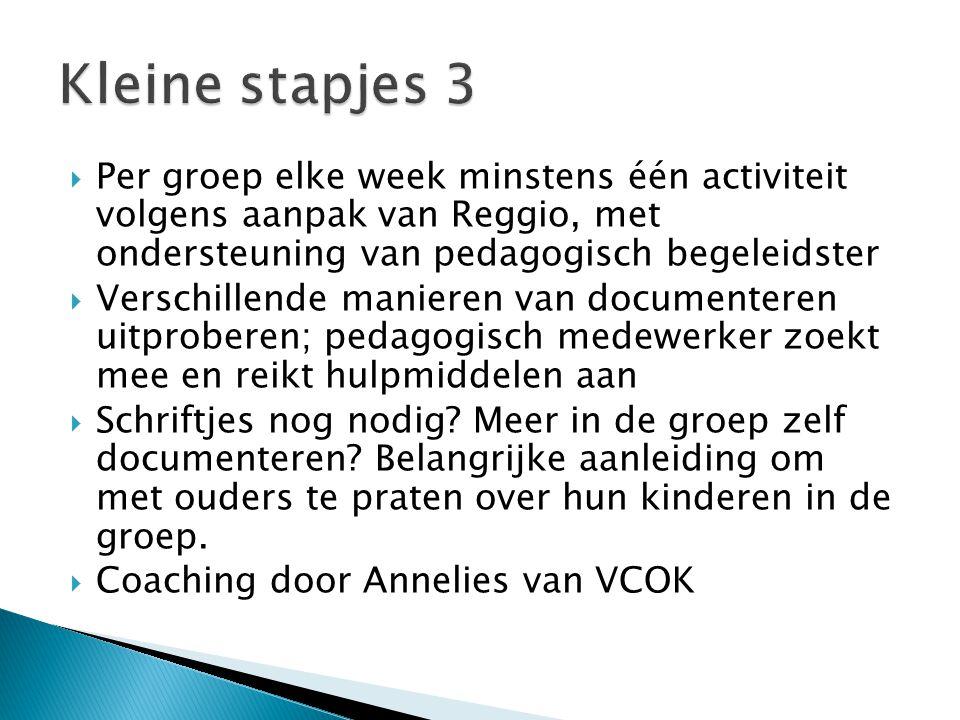 Kleine stapjes 3 Per groep elke week minstens één activiteit volgens aanpak van Reggio, met ondersteuning van pedagogisch begeleidster.