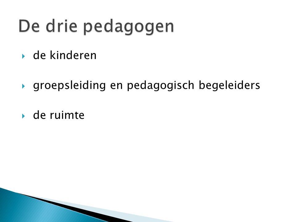 De drie pedagogen de kinderen groepsleiding en pedagogisch begeleiders