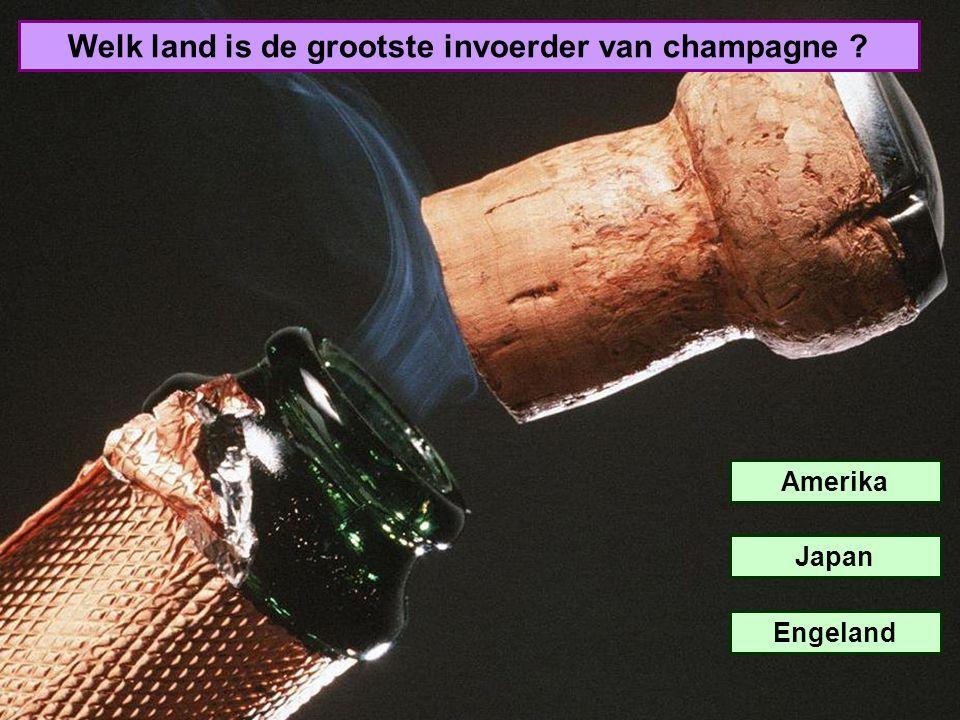 Welk land is de grootste invoerder van champagne