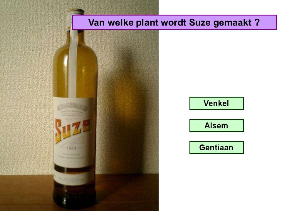 Van welke plant wordt Suze gemaakt