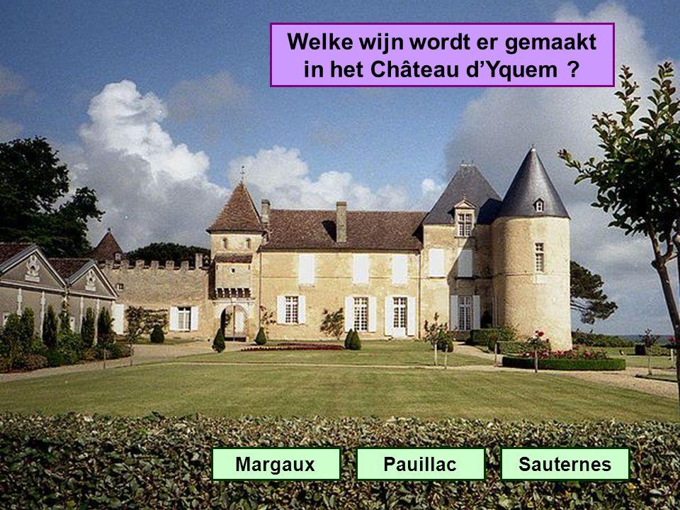 Welke wijn wordt er gemaakt in het Château d'Yquem