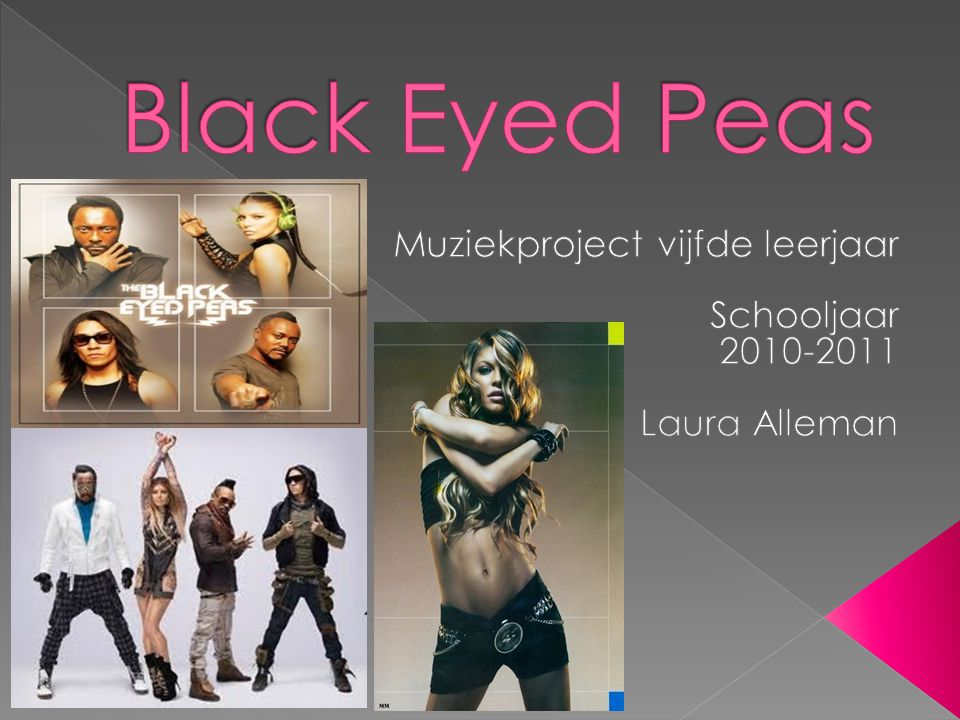 Muziekproject vijfde leerjaar Schooljaar 2010-2011 Laura Alleman