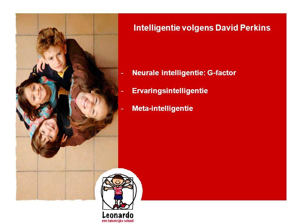 Intelligentie volgens David Perkins