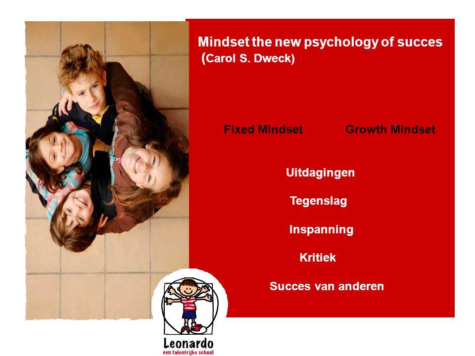 Mindset the new psychology of succes