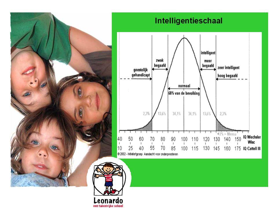 Intelligentieschaal