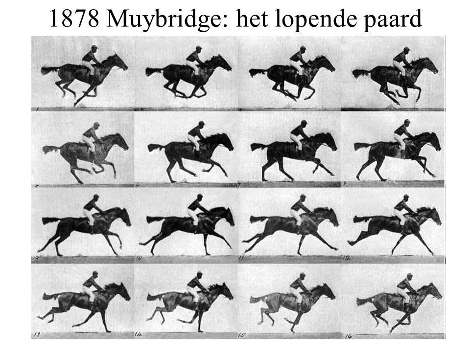 1878 Muybridge: het lopende paard