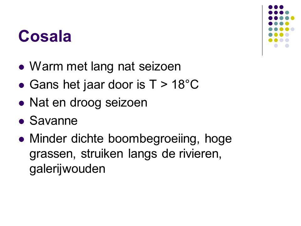Cosala Warm met lang nat seizoen Gans het jaar door is T > 18°C
