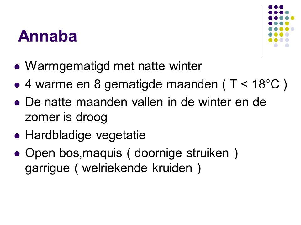 Annaba Warmgematigd met natte winter