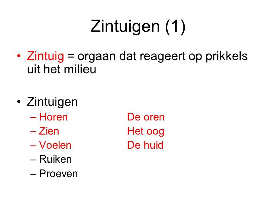 Zintuigen (1) Zintuig = orgaan dat reageert op prikkels uit het milieu