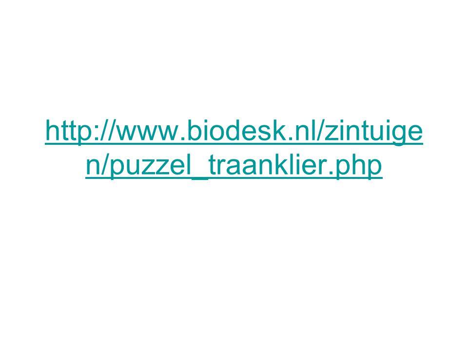 http://www.biodesk.nl/zintuigen/puzzel_traanklier.php