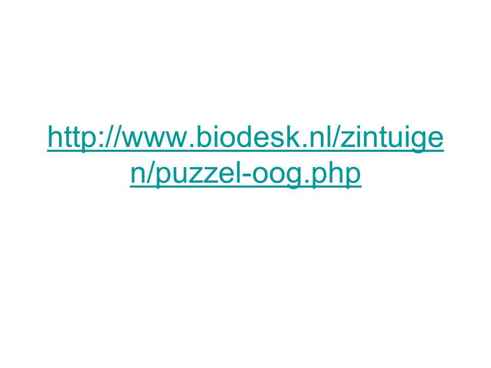 http://www.biodesk.nl/zintuigen/puzzel-oog.php