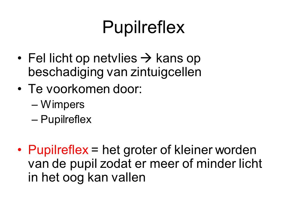 Pupilreflex Fel licht op netvlies  kans op beschadiging van zintuigcellen. Te voorkomen door: Wimpers.
