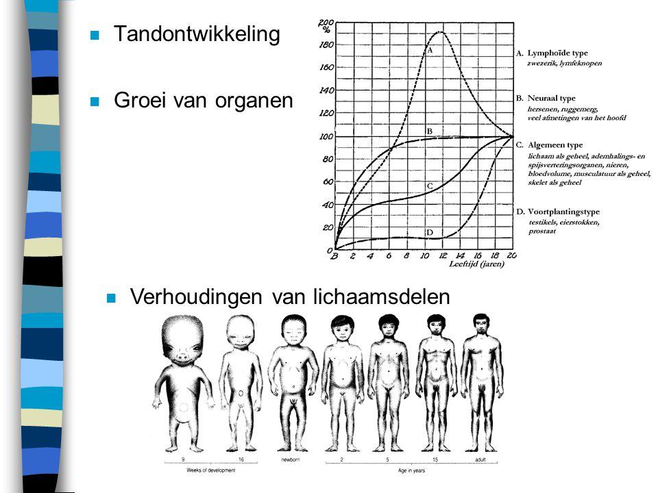 Tandontwikkeling Groei van organen Verhoudingen van lichaamsdelen