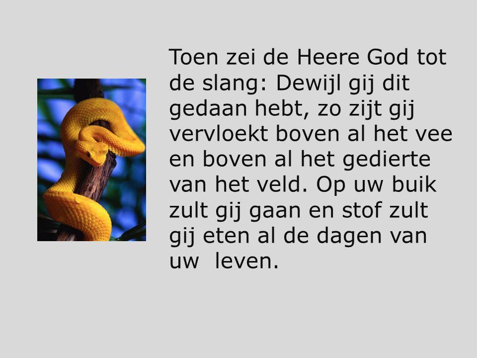Toen zei de Heere God tot de slang: Dewijl gij dit gedaan hebt, zo zijt gij vervloekt boven al het vee en boven al het gedierte van het veld.