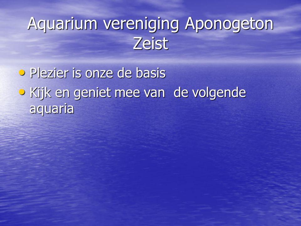 Aquarium vereniging Aponogeton Zeist