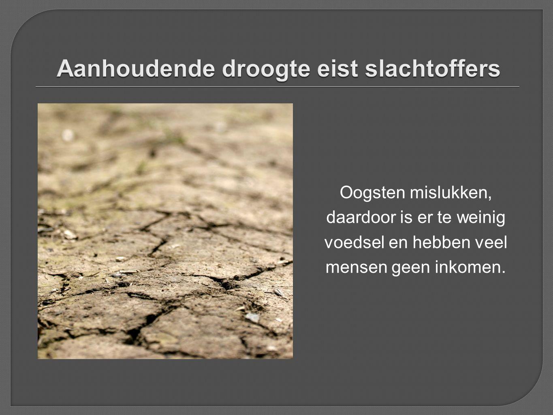 Aanhoudende droogte eist slachtoffers