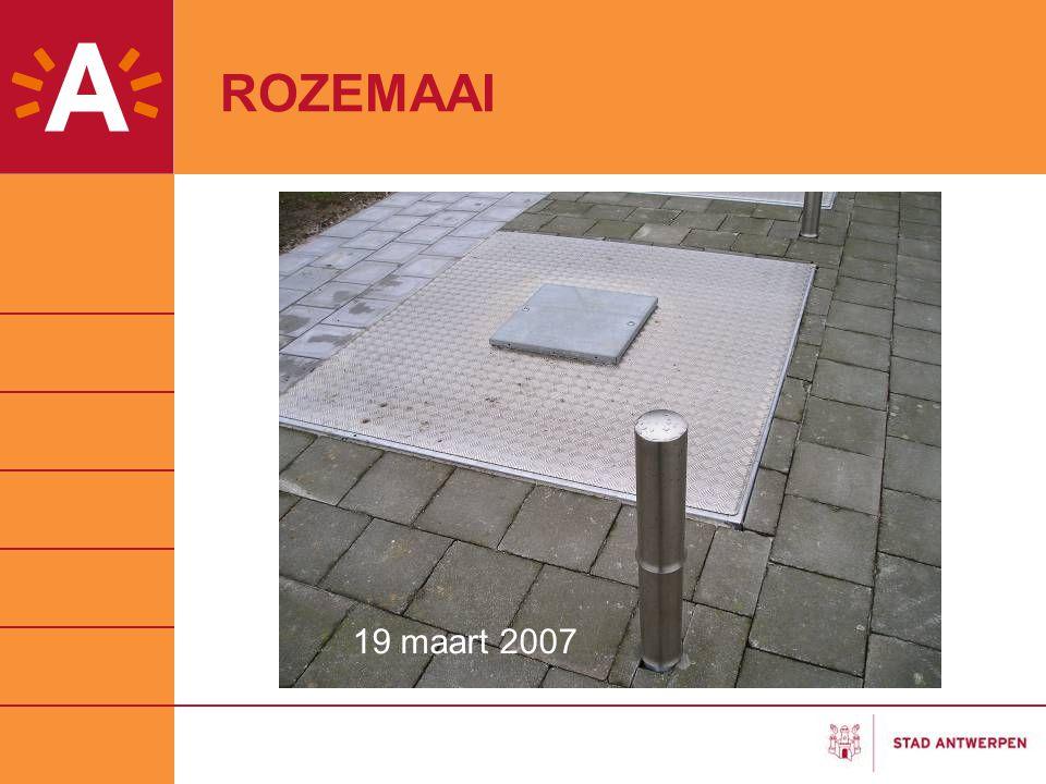ROZEMAAI Nog foto gaan nemen 19 maart 2007 19 maart 2007