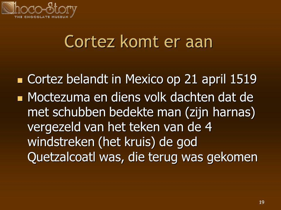 Cortez komt er aan Cortez belandt in Mexico op 21 april 1519