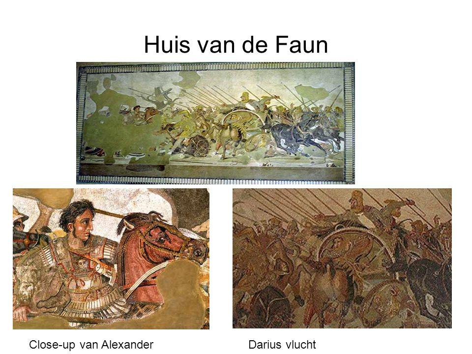 Huis van de Faun Close-up van Alexander Darius vlucht