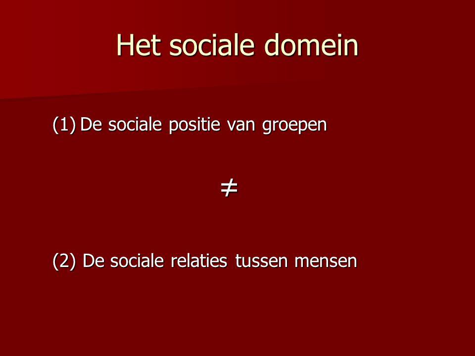 Het sociale domein De sociale positie van groepen ≠