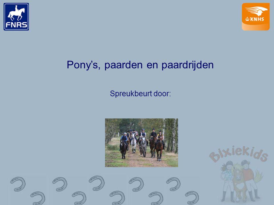Pony's, paarden en paardrijden