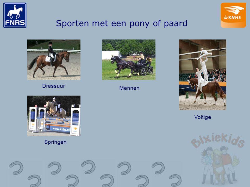 Sporten met een pony of paard