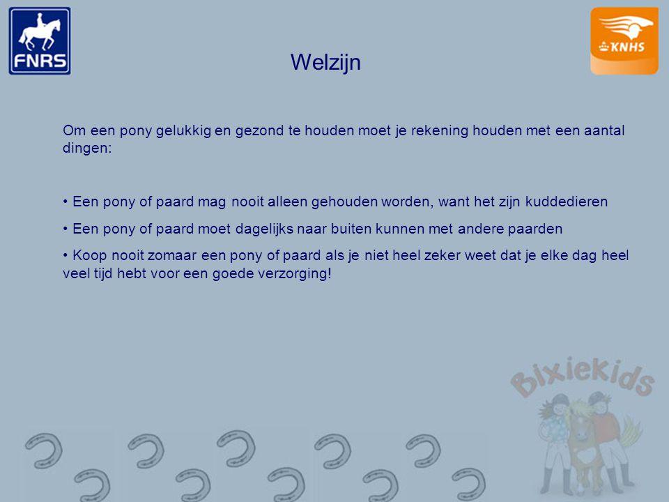 Welzijn Om een pony gelukkig en gezond te houden moet je rekening houden met een aantal dingen: