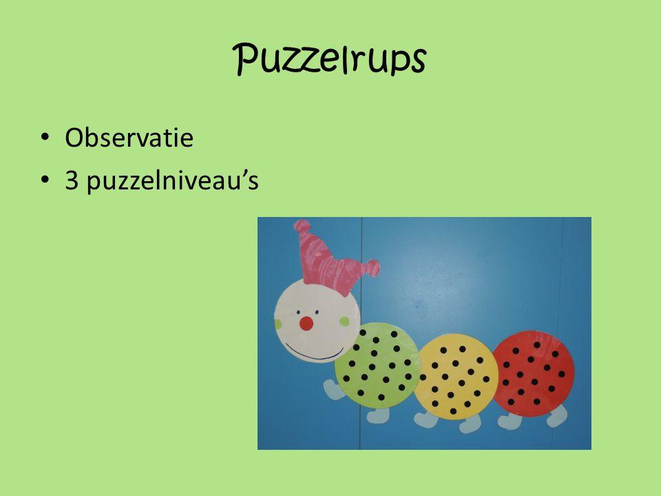 Puzzelrups Observatie 3 puzzelniveau's