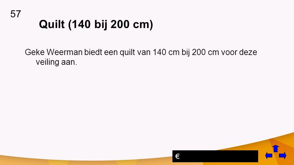 57 Quilt (140 bij 200 cm) Geke Weerman biedt een quilt van 140 cm bij 200 cm voor deze veiling aan.