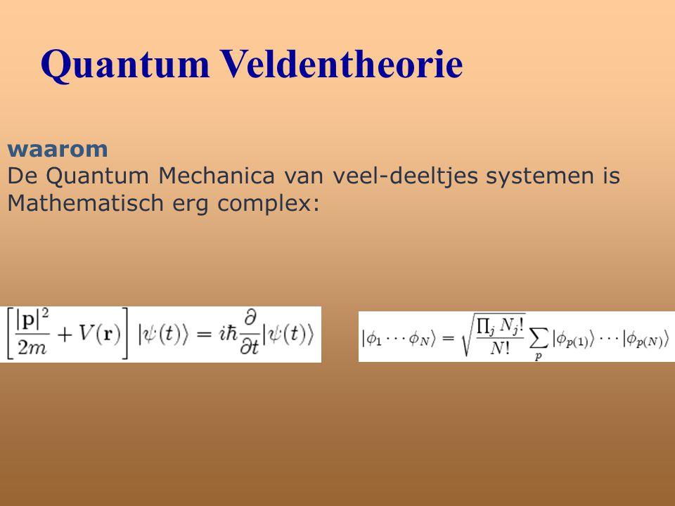 Quantum Veldentheorie
