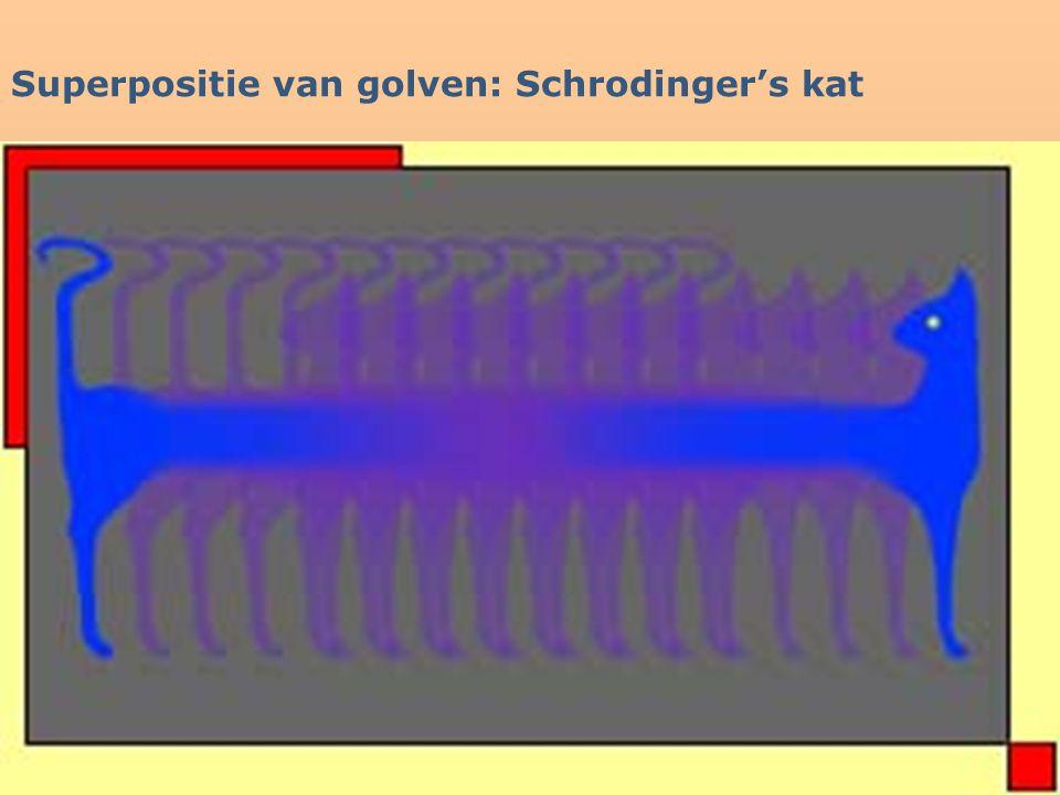 Superpositie van golven: Schrodinger's kat