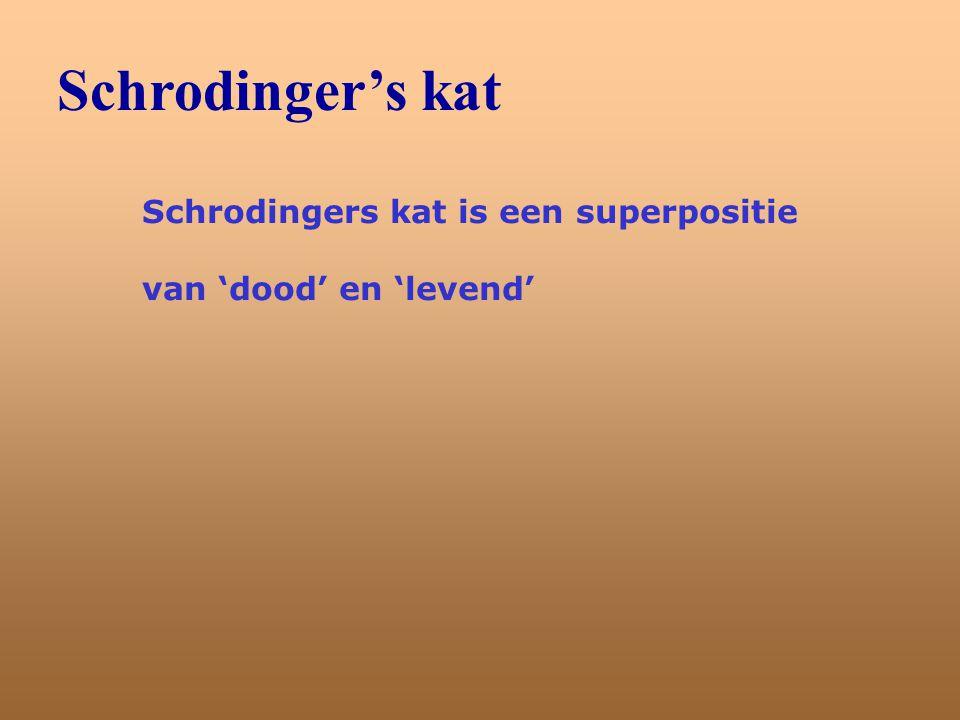 Schrodinger's kat Schrodingers kat is een superpositie