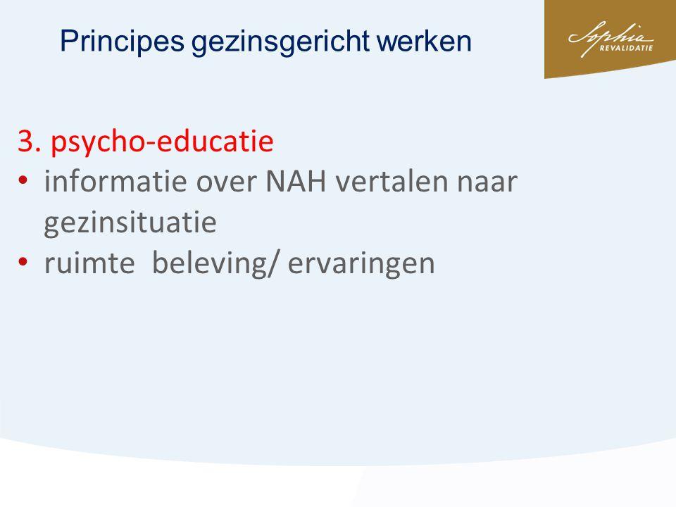 informatie over NAH vertalen naar gezinsituatie