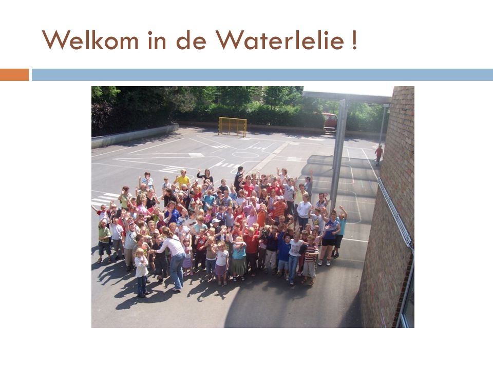 Welkom in de Waterlelie !