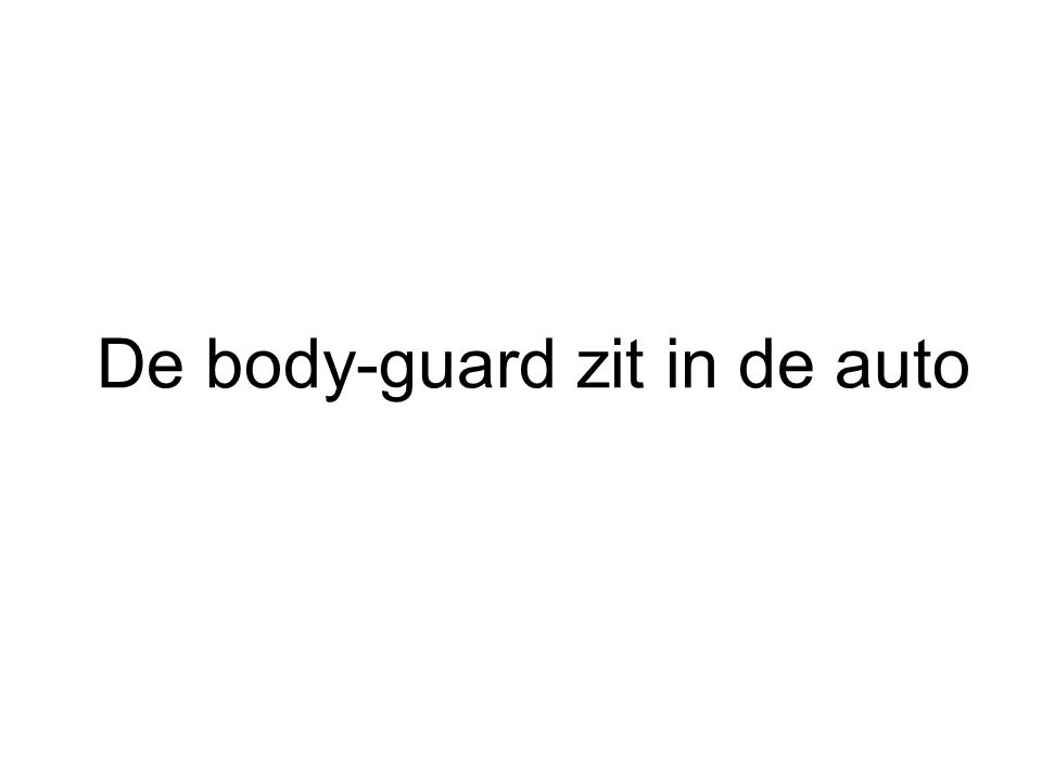 De body-guard zit in de auto