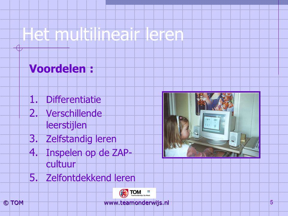 Het multilineair leren