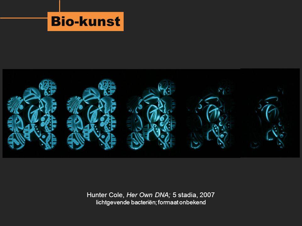 Bio-kunst Hunter Cole, Her Own DNA; 5 stadia, 2007