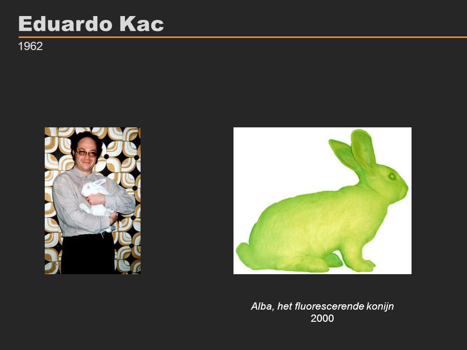 Alba, het fluorescerende konijn
