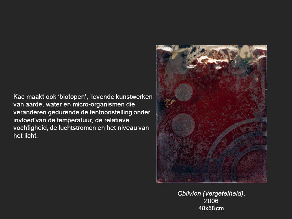 Oblivion (Vergetelheid), 2006
