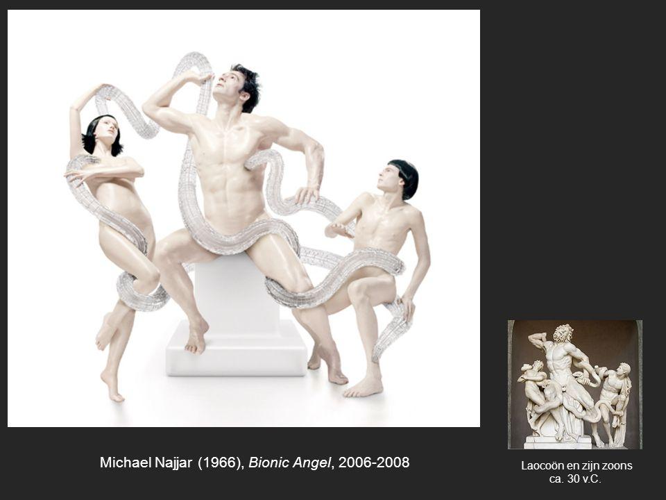 Michael Najjar (1966), Bionic Angel, 2006-2008