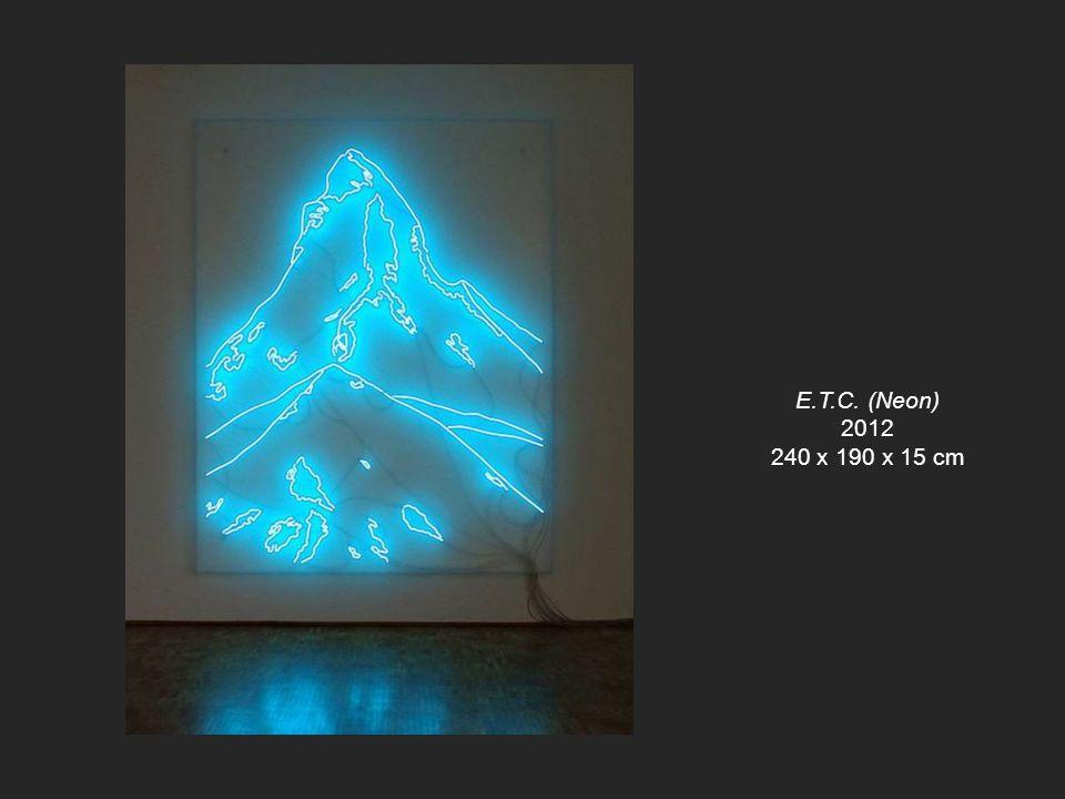 E.T.C. (Neon) 2012 240 x 190 x 15 cm