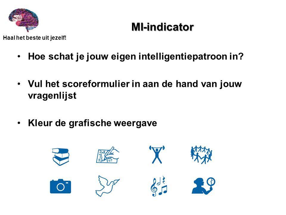 MI-indicator Hoe schat je jouw eigen intelligentiepatroon in